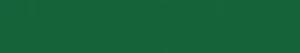wiseidum Logo